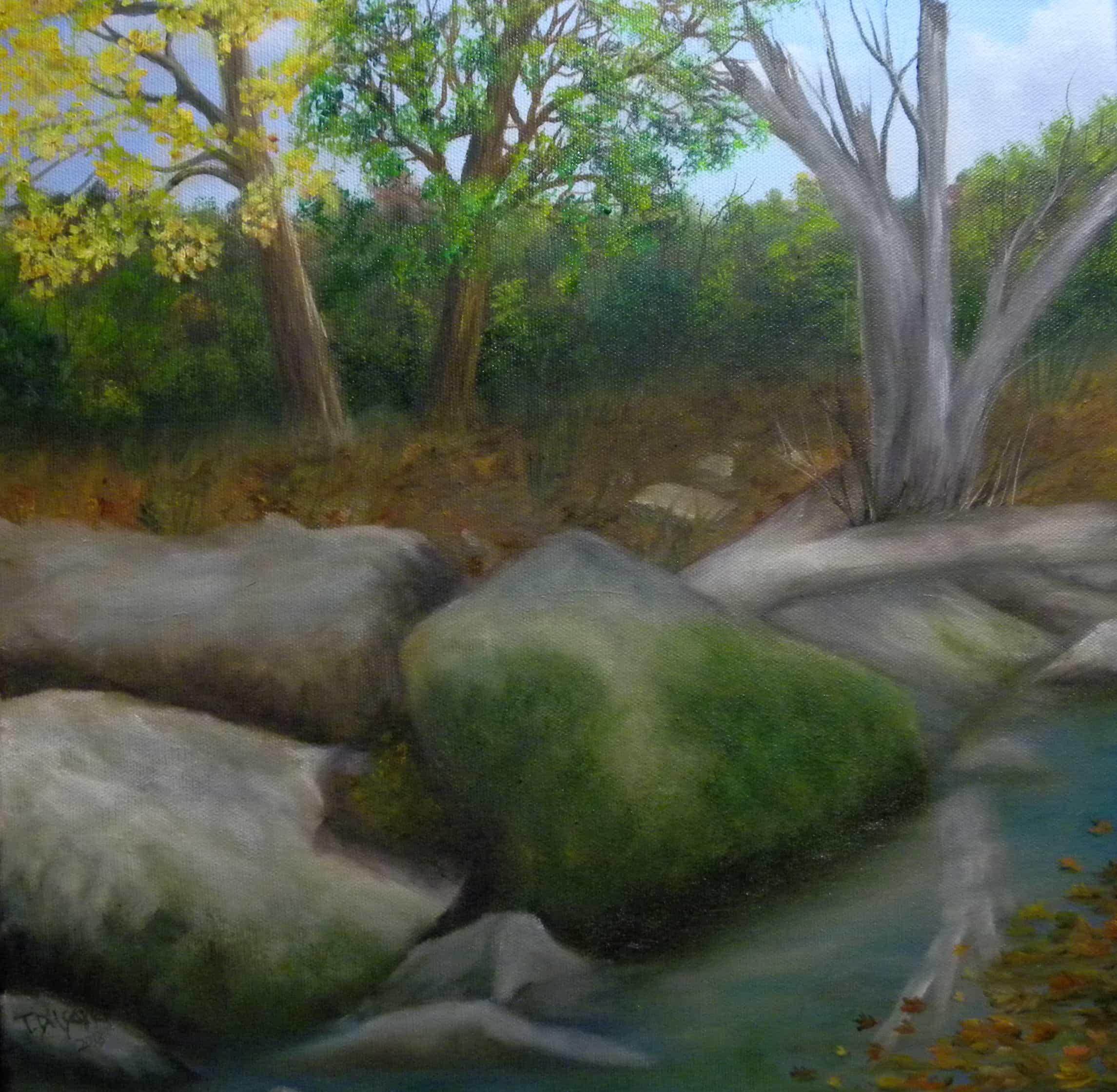 Mossy rock plein aire